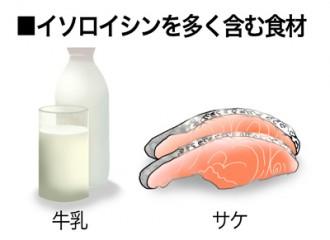 ミドリムシ(ユーグレナ)に含まれるイソロイシンを多く含む食品の紹介図