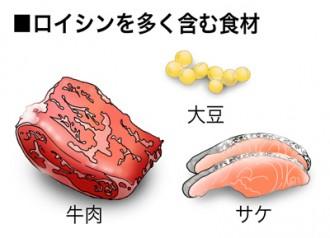ミドリムシ(ユーグレナ)に含まれるロイシンを多く含む食品の紹介図