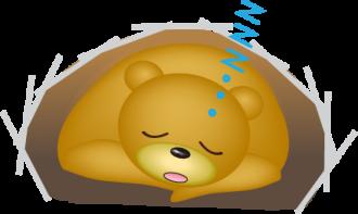 冬眠中のクマのイラスト│グリシンには自然な睡眠を導く効果があり