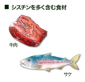 シスチンを多く含む食品の紹介図
