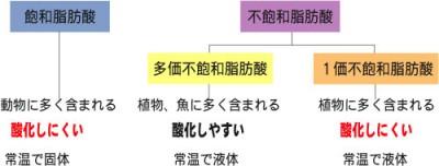 飽和脂肪酸と不飽和脂肪酸の分類表