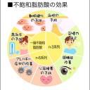 ミドリムシ(ユーグレナ)に含まれる不飽和脂肪酸の効果を解説した図