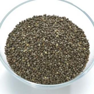 リノレン酸を多く含む荏胡麻(エゴマ)の写真
