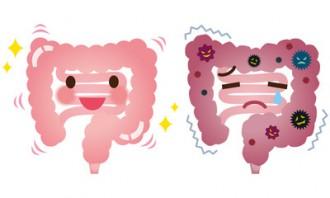ミドリムシ(ユーグレナ)サプリで腸内を整えて免疫力をアップ!