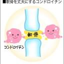 軟骨の部分にあり減少が腰痛や関節痛の原因となるコンドロイチン図