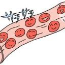 サラサラの血液を作るDPAの働きを解説した図