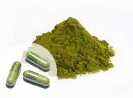 粉末のミドリムシ(ユーグレナ)サプリメントの写真