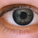 目の写真│ミドリムシで視力が回復する?