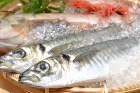 かごに盛られた新鮮な魚の画像