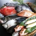 たくさんの新鮮な魚の画像│ミドリムシ(ユーグレナ)に含まれ魚類にも多く含まれる必須脂肪酸「DHA」とは?