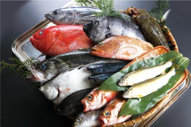 たくさんの新鮮な魚の画像
