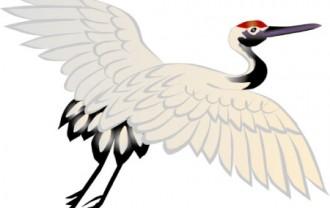 きれいな鶴のイラスト│若返り・長寿ホルモン「アディポネクチン」とは?