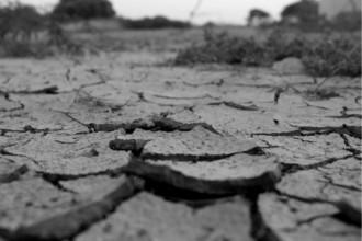 乾燥してひび割れた地面の画像