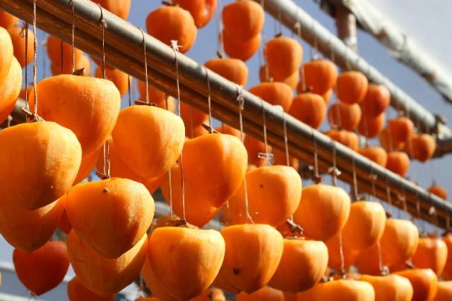 オレンジ色に輝くきれいな干し柿の画像