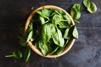 植物の写真│毒性の高い重金属をつかまえて排出してくれるのが、「葉緑素(クロロフィル)」です。