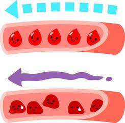 クロロフィルはコレステロール値を低減させ、血液をさらさらにし、高血圧や動脈硬化を予防します。