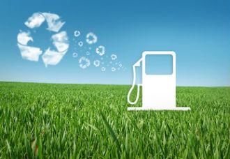 ミドリムシ(ユーグレナ)はバイオ燃料の材料としても注目されています