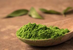 健康食品などに使用するミドリムシは乾燥させて成分を凝縮したもの